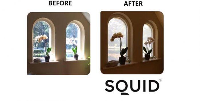 Squid tekstfolie